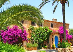 Arbeitsplatz im Süden – Beispiel Mallorca