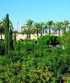 Sprachschulen in der Region Valencia